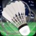 羽毛球3D 破解版 1.3