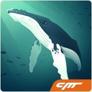 深海水族馆V1.3.9 安卓版