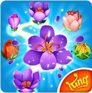 绽放花朵传奇 V43.0.1 安卓版