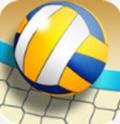沙滩排球世界冠军 V1.01 安卓版